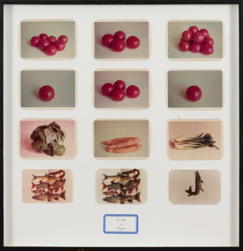 La Soupe de Daguerre van Marcel Broodthaers bestaat uit negen kleurenfoto's van groenten en drie vissen uit zijdepapier.