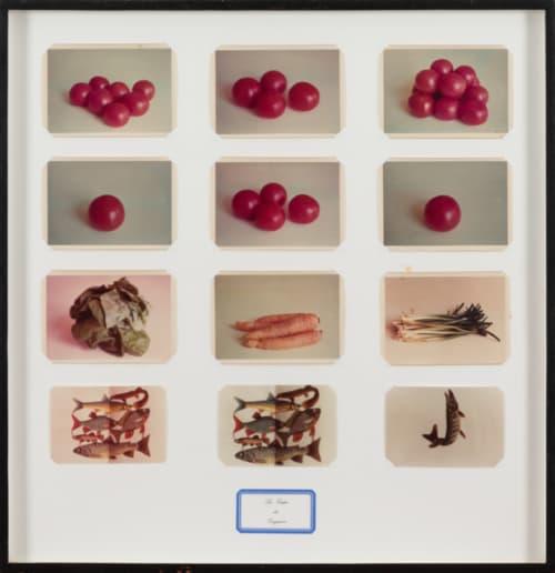 La Soupe de Daguerre by Marcel Broodthaers consists of nine color photographs of vegetables and three silk paper fish.