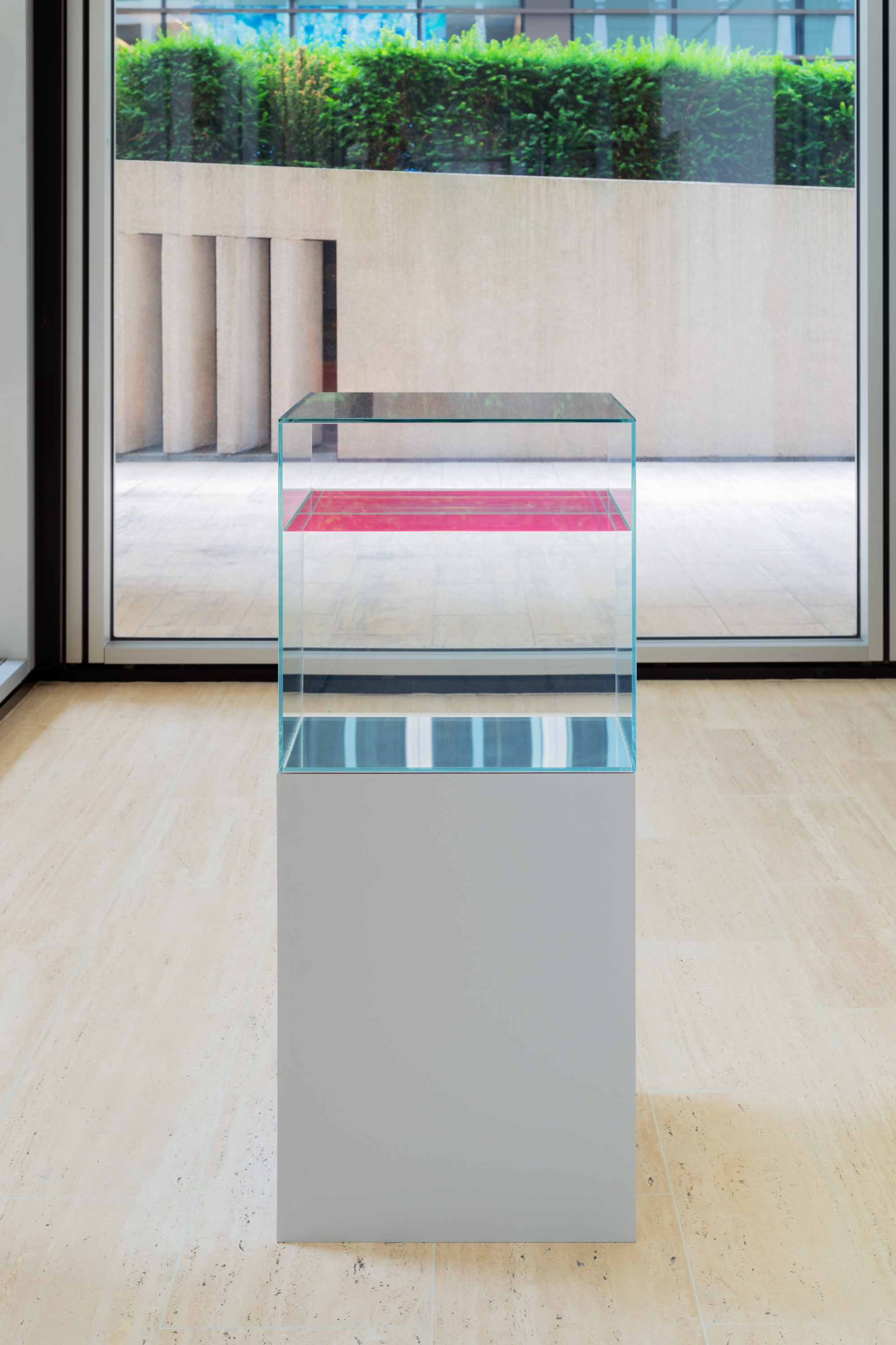 Pink and Bright Green by Ann Veronica Janssens are two glass cubes filled with paraffin oil.