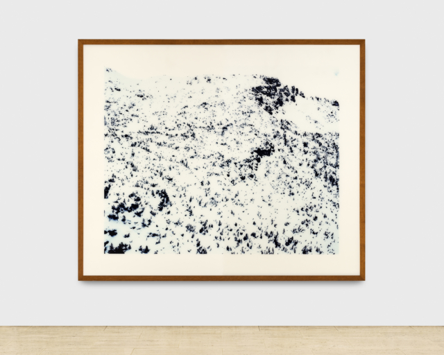 Photograph of a snow-covered ridge of conifers, part of the Ofenpass in Switzerland, by artist Andreas Gursky.